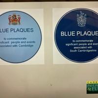 Posh Blue Plaques