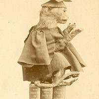 Cambridge Victorians: Charles Darwin