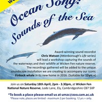 Illustration: Ocean Song Workshop in the Cambridge Museum of Technology on Sunday 21st June 2pm to 3.30pm