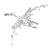 Pterosaur Dot to Dot Sheet