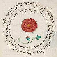 Illustration: Timeline Choir